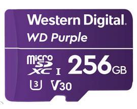 WDD128G1P0A memoria flash 256 GB MicroSDXC - Imagen 1