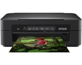 Epson Expression Home XP-255 - Imagen 1