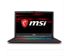 MSI COMPUTER GP73 8RD-419XCI7-8750H ·